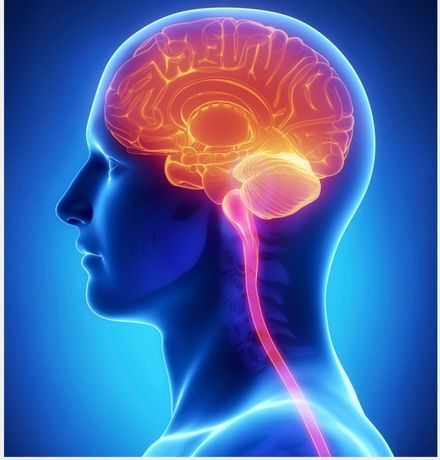 Recuperare neurologica/psihologica & logopedie-Constanta& On-line