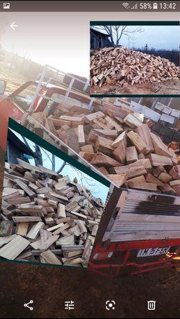 Vînd lemne de foc Fag Tăiate și Crapate sau ÎNTREGI