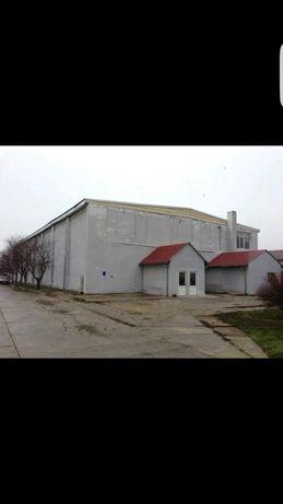 Complex hale industriale dotat cu cantar auto RWB 18m/80 tone,birouri