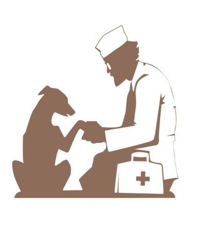 Скорая ветеринарная помощь. Ветеринарные услуги с выездом врача на дом
