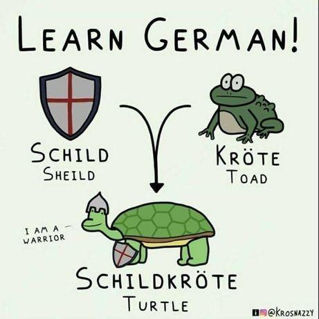 Cursuri de limba germană si limba spaniola