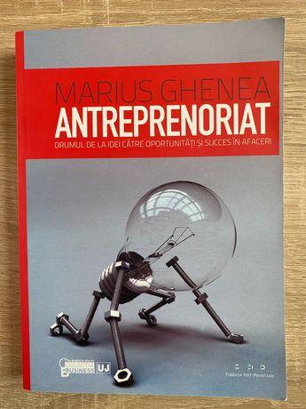 Marius Ghenea - Antreprenoriat