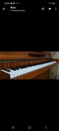 Продам фортепиано Германского производство  zemmerman ТОРГ СРОЧНО!!!