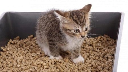 Лотки и наполнители для кошек и котят. Доставка.