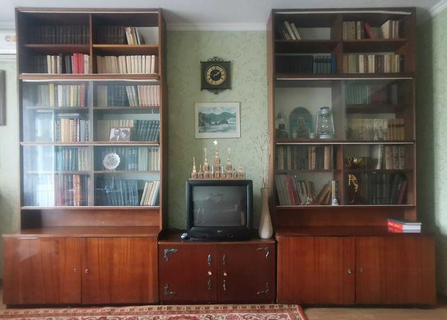 Книжные шкафы, тумбочка, телевизор