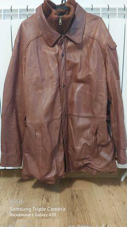 Мъжко яке, естествена кожа