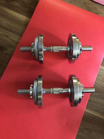 Gantere profesionale reglabile cu discuri de 20 kg, 10+10 kg