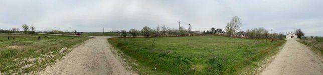 teren INTRAVILAN Corbii Mari, sat Petresti, Dambovita, drum asfaltat