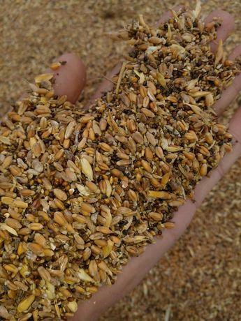 Продам отходы пшеничная