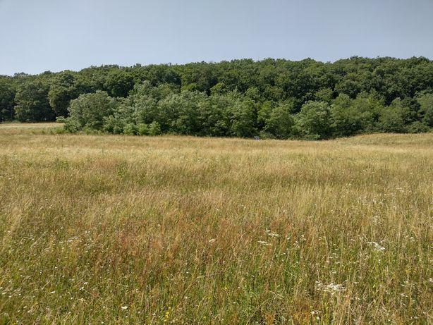 Vând teren in Gilău