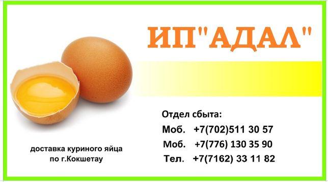Яйцо куриное пищевое