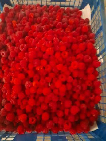 Малина ягоды малина