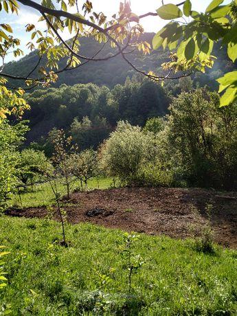 Vand teren in zona Cicarlau