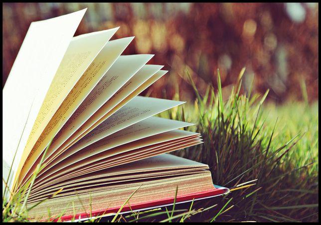 Content writer/Redactor articole diverse