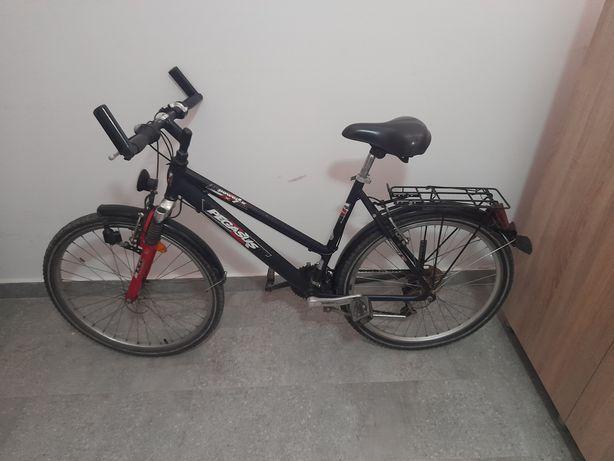 Bicicleta Sport Pegasus