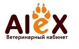 Ветеринарный кабинет в городе Каскелен