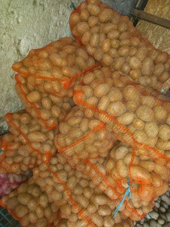 Vând Cartofi de consum