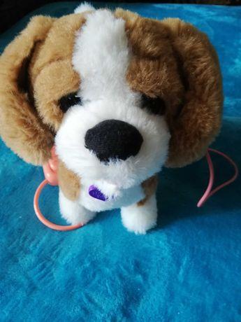 Jucarie de plus Noriel Pets - Zigo catelusul Beagle cu functii