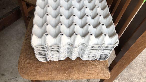 Кори за яйца чисти