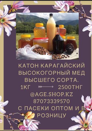 Горный мед Катон-Карагайский мёд