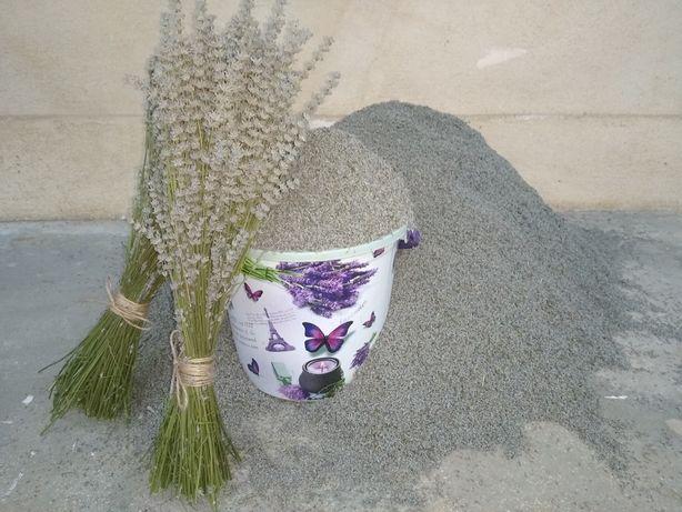Floare uscata de Lavanda soi Lavandin