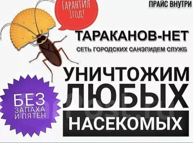 Санитарная служба в городе Тараз от клопов и клещей, и тараканы