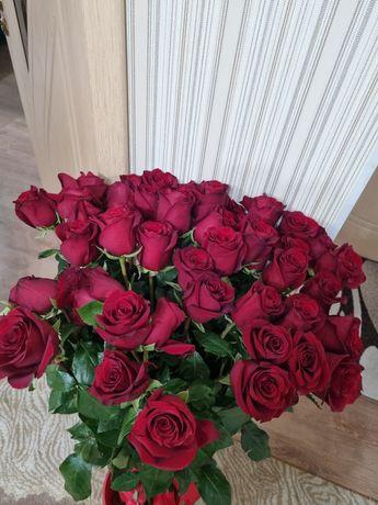 53 метровые розы