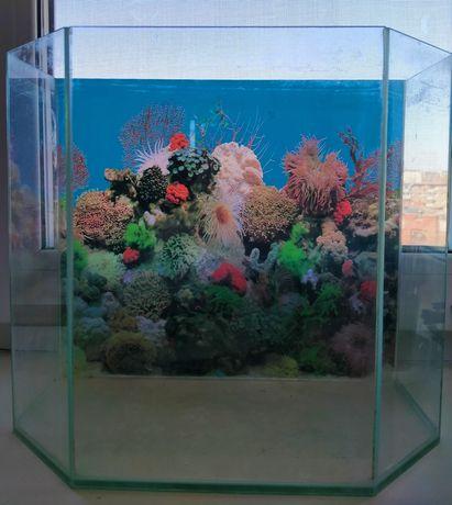Продам аквариум на 10 литров.