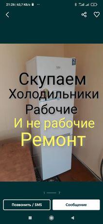 Холодильник холодилник