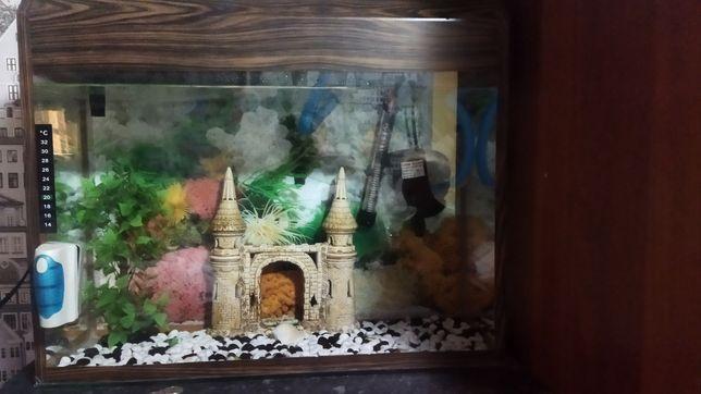 Продаеться аквариум