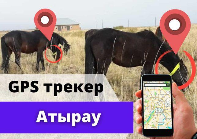 GPS трекер для лошадей, овец, коров, КРС SmartOne C в Атырауе