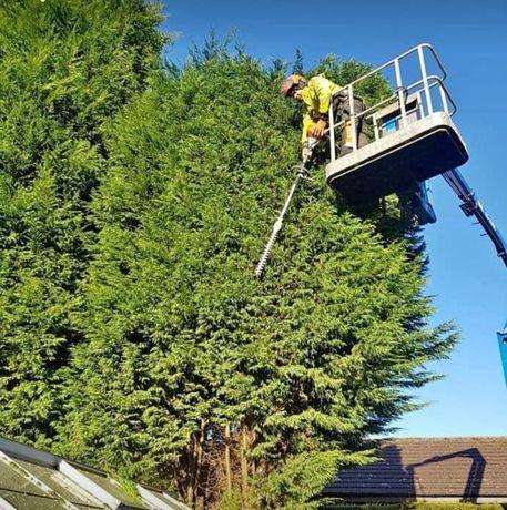 Рязане и кастрене на дървета.Автовишки под наем