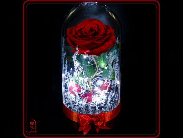 Уникален подарък за жена / 8 Март / Вечна роза в ГОЛЯМА стъкленица