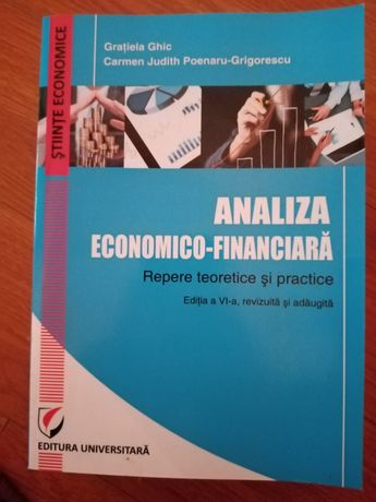 Analiza economico-financiara de Grațiela Ghic