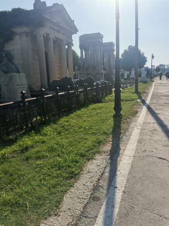 Vând loc de veci în Ungureni