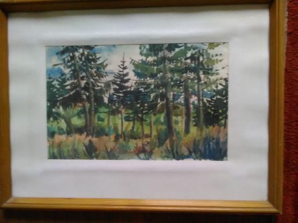 Pictura aquarela