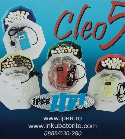 Официален вносител на Румънските инкубатори CLEO 5!