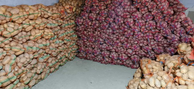 Cartofi Alb rosu