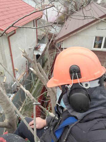 Taiere copaci toaletari întreținere grădini alpinisti utilitari