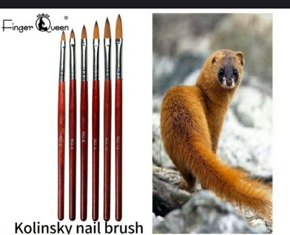 1 buc. Pensule Kolinsky cu păr zibelină, limbă de pisică, artă