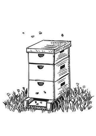 Тара б/у для пчел