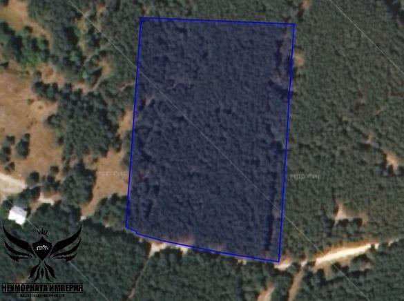 Продавам земя 11989 кв.м. в гр.Костандово,обл. Пазарджик,общ.,Ракитово