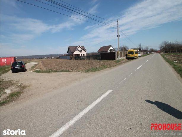 Garleni - 3000 mp - loturi cu drum de acces