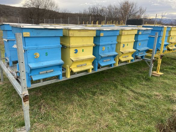 Продавам кошери и платформи номер на пчелин :30460148