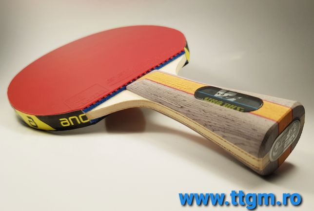 Paleta tenis de masa (ping pong) Dhs/bluefire