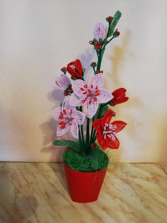 Цветя за ценители