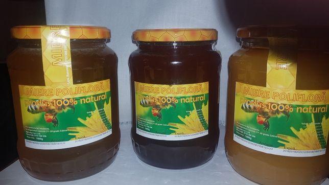 Vand miere poliflora naturala 25 lei/kg