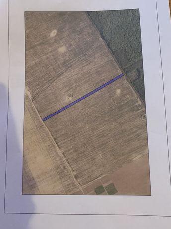 Vand 1ha teren extravilan/agricol Comuna Snagov