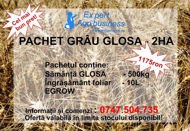 Pachet samanta grau GLOSA c1 2HA - Expert AGribusiness Fundulea