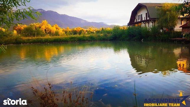 FILM+3D! In arcul Parcului Național Bucegi, lac propriu, domeniu